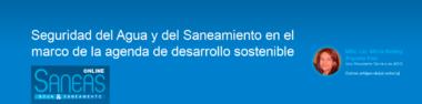 saneas-vpt